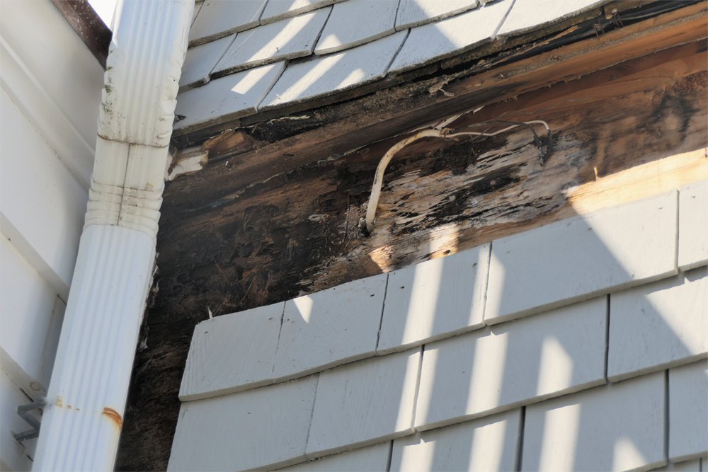 house wood rot